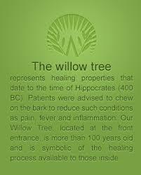 willow tree narrative